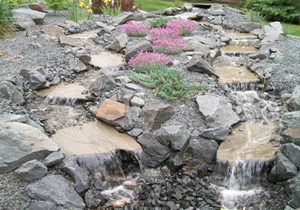backyard-water-feature