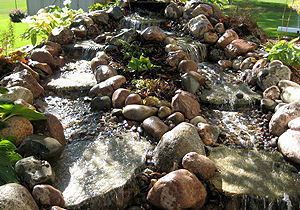 Adams, MN Backyard Ponds
