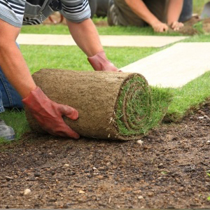 landscaping lawn services